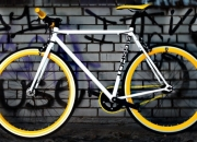 Get the best single speed road bike in USA