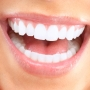 Stewarthefton - Best Dentist in Highland Park