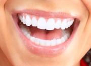 Stewarthefton - Best Dentist in Highland Park
