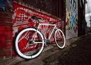 Get best quality custom single speed bikes online