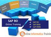 Online training for sap business objects