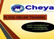 Oracle pl/sql online training